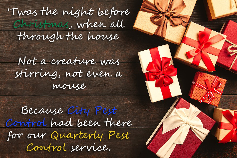 Happy Holidays - City Pest Control Quarterly Pest Control Service
